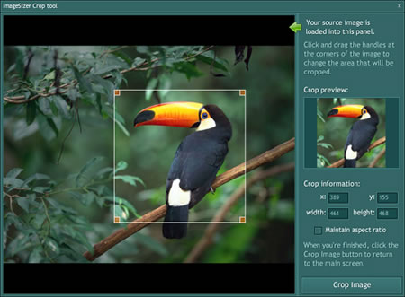 Screenshot of ImageSizer crop tool
